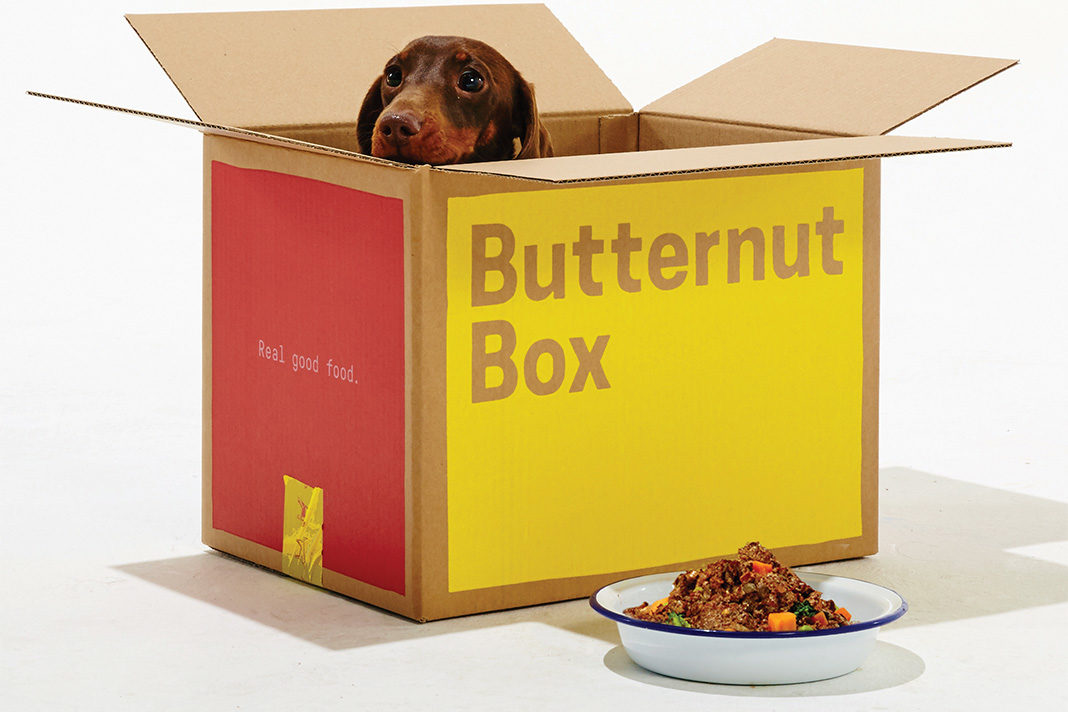 Butternut Box Referral Code